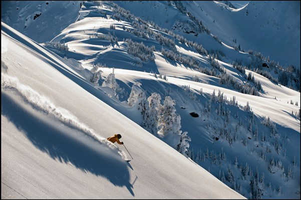 Man skiing in fresh powder on Revelstoke along the Powder Highway